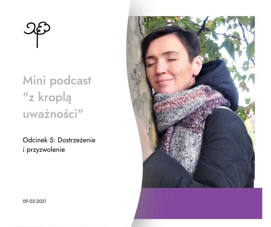 Mini podcast - Dostrzeżenie i przyzwolenie